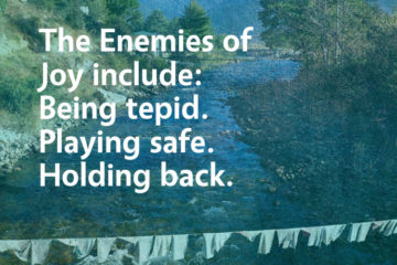 enemies of joy