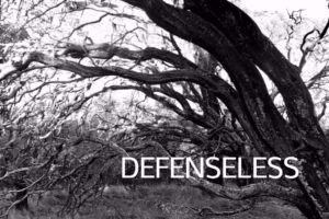 Defenseless by Christine Marie Mason