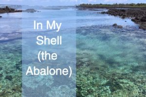 In My Shell by Christine Marie Mason