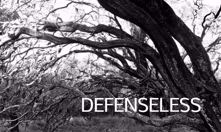 Defenseless by Christine Marie Mason